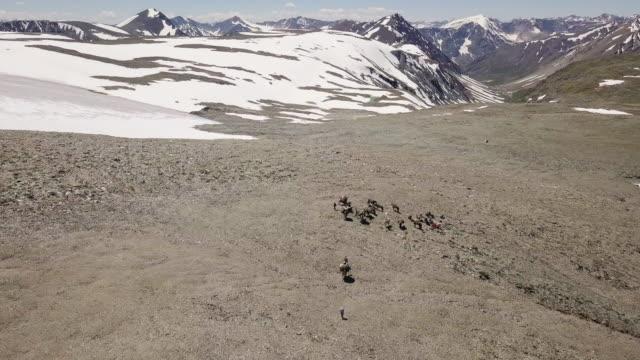 vidéos et rushes de caravane à tavan bogd mongolie - mongolie indépendante