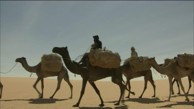 Caravan In Tenere Desert