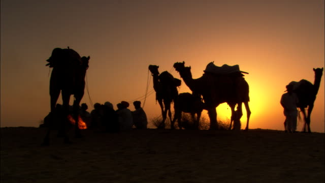 a caravan of camels and travelers rest in the desert for the night. - 遊牧民族点の映像素材/bロール