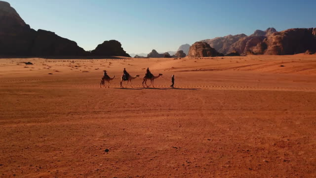 caravan of camels walking in the wadi rum desert in jordan on a sunny day - sandstone stock videos & royalty-free footage