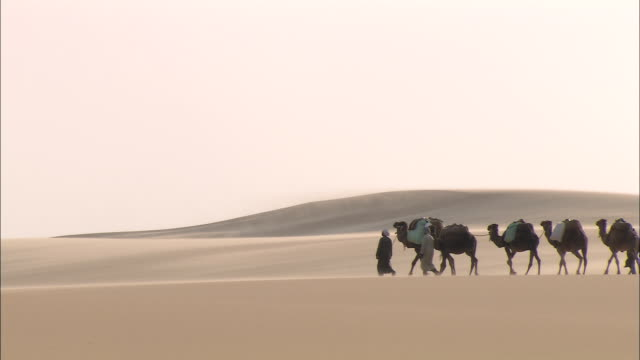 a caravan of men and camels crosses sand dunes. - camel train stock videos & royalty-free footage
