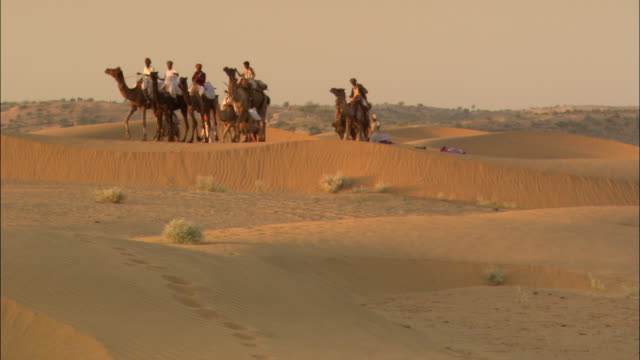 a caravan slowly makes its way through a desert in india. - camel train stock videos & royalty-free footage