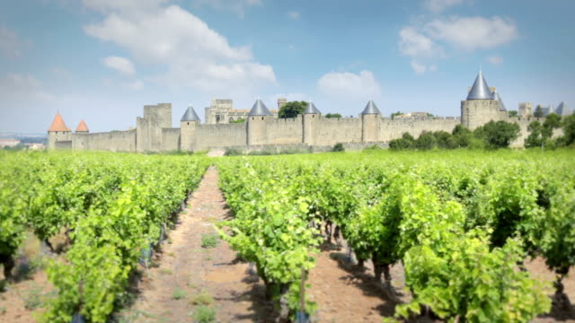 carcassonne, france - carcassonne stock videos & royalty-free footage