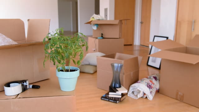 cardboard boxes and belongings in messy empty apartment - imperfection stock videos & royalty-free footage