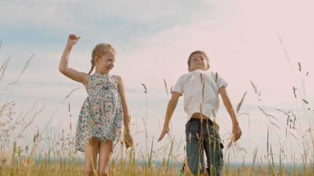 ms carefree boy and girl jumping for joy in idyllic rural field - brother stock videos & royalty-free footage