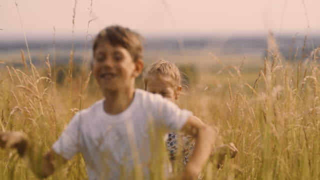 ms carefree boy and girl running in sunny idyllic rural field - sister stock videos & royalty-free footage