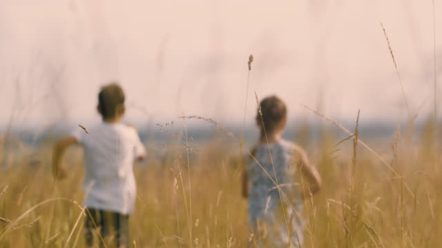 ms carefree boy and girl running in sunny idyllic rural field - field stock videos & royalty-free footage