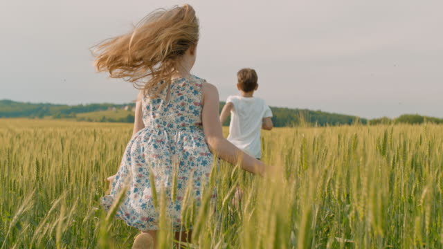 ms carefree boy and girl running in sunny idyllic rural wheat field - sister stock videos & royalty-free footage