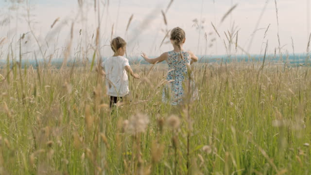 ms carefree boy and girl running in sunny,idyllic rural field - sister stock videos & royalty-free footage