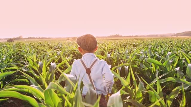 vidéos et rushes de garçon insouciant s'exécutant dans le champ de maïs ensoleillé, rural, en temps réel - casquette