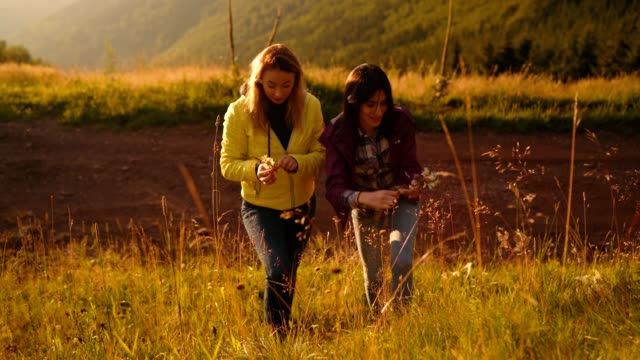 vidéos et rushes de femmes sans soucis collecte de fleurs sauvages - tourisme vert