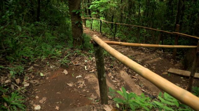 北タイの熱帯林の道で慎重に、ウォーキングのダウン - アノニマス点の映像素材/bロール