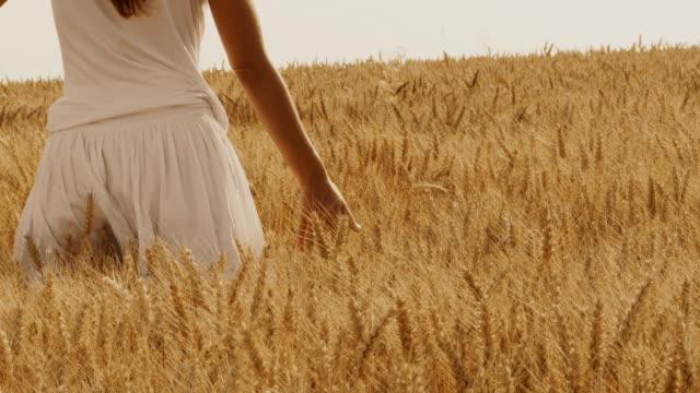 vídeos y material grabado en eventos de stock de hd: caressing el trigo - falda