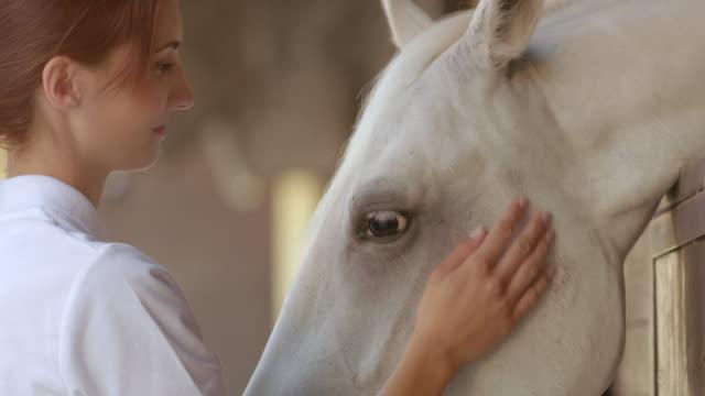 vídeos y material grabado en eventos de stock de mo cuidador de san luis obispo que el caballo blanco algunos placeres - sólo mujeres jóvenes