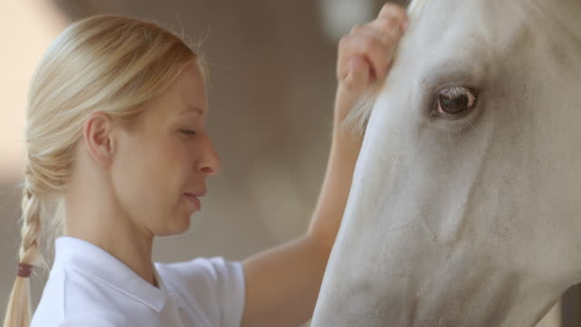 SLO, MO, Hausmeister petting und feeding the white horse