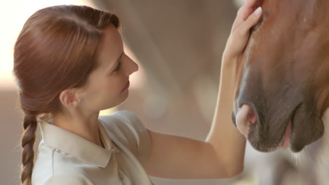 slo, mo, hausmeister streicheln bucht pferd auf dem kopf und nase - pferdestall stock-videos und b-roll-filmmaterial