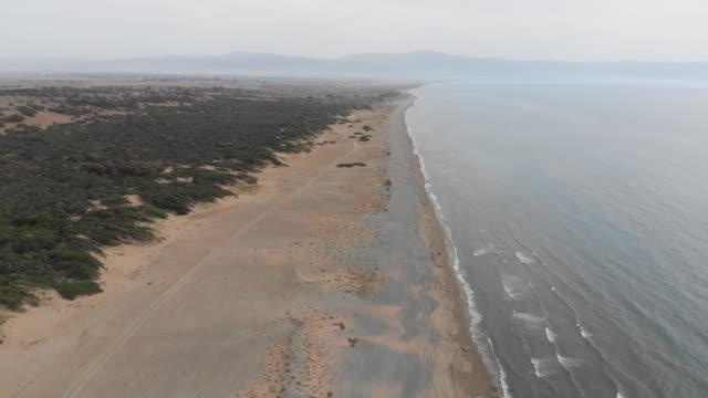caretta turtle beach, morphou bay, agia eirini (akdeniz), kyrenia (girne) district, northern cyprus - republic of cyprus stock videos and b-roll footage