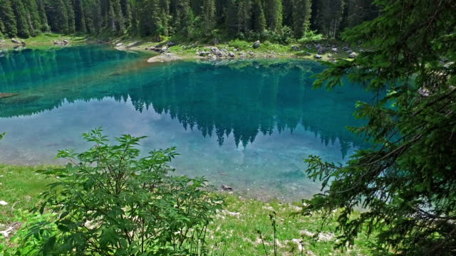 Carezza Lake - Trentino - Italy