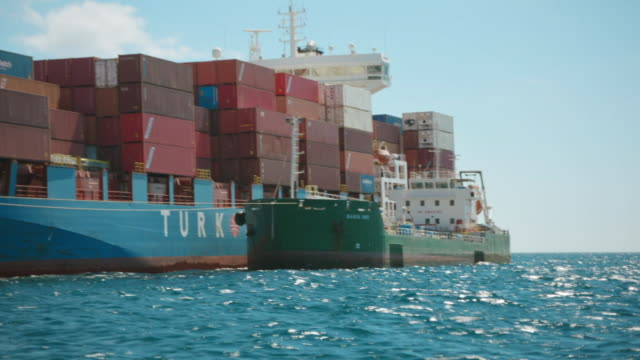 Cargo ships and dolphins off the Strait of Gibraltar