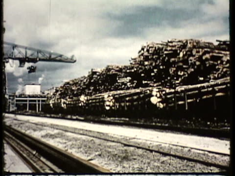 1955 montage ws pan ms la cargo train with timber moving past, crane shifting timber / new zealand / audio - desaturated stock videos & royalty-free footage