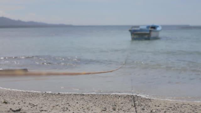 caribbean beach - moor stock videos and b-roll footage