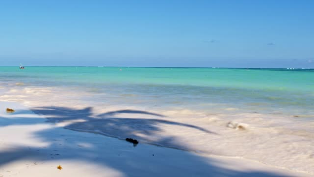 caribbean beach with white sand - turquoise coloured stock videos & royalty-free footage