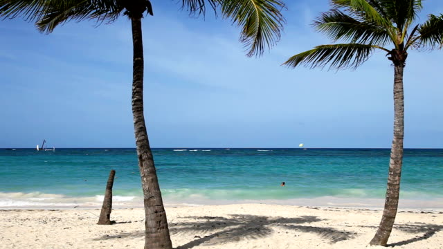 caribbean sea - punta cana stock videos and b-roll footage