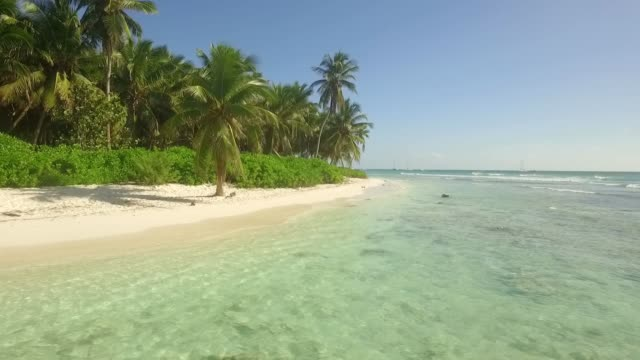 caribbean vacation - dominican republic stock videos and b-roll footage