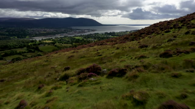 carlingford lough a main entry point for shipping on the east coast of the island of ireland and the most easterly point of the border that runs... - 北アイルランド点の映像素材/bロール