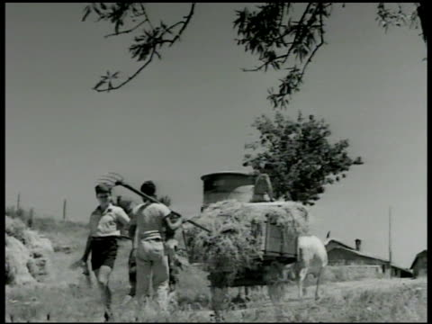 'carlo' walking past hay wagon boy w/ pitchfork talking to him walking past boys working on boat 'carlos' stopping to talk to boys - 1946年点の映像素材/bロール