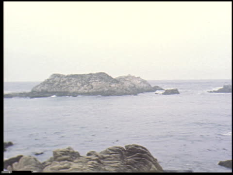 [carmel, california, august 2, 1955] - 7 of 14 - see other clips from this shoot 2299 stock videos and b-roll footage