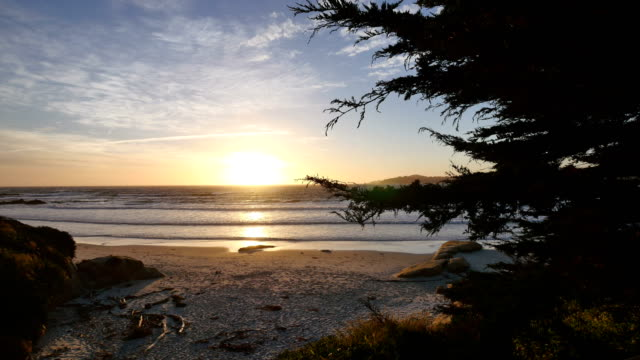 carmel-by-the-sea, ca: 4k - monterey county stock videos and b-roll footage