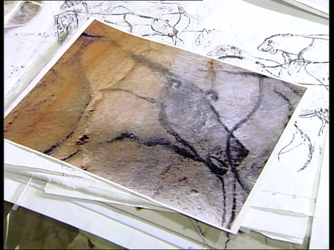carol fritz interview sot artist conceived his figures before he put them on wall of cave photograph of art on desk and layer put over top to show... - prehistoric art stock videos & royalty-free footage