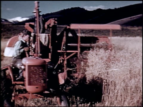 a carol of harvest - 8 of 10 - see other clips from this shoot 2070 stock videos & royalty-free footage