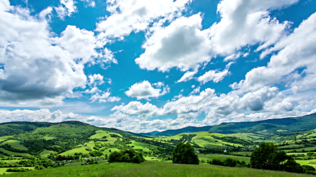 "vídeos de stock, filmes e b-roll de carpathian montanhas ""vetta - cottonwood canyon"