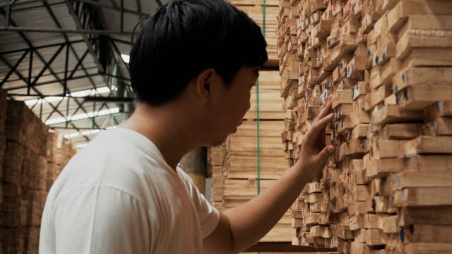 carpenter examining piece of wood - lumber industry stock videos and b-roll footage