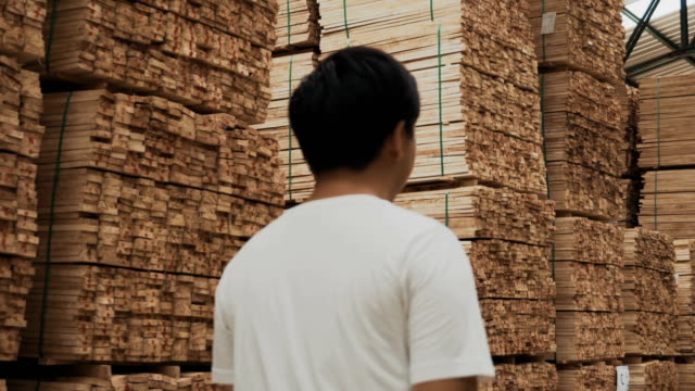 carpenter walking in industry - lumber industry stock videos and b-roll footage