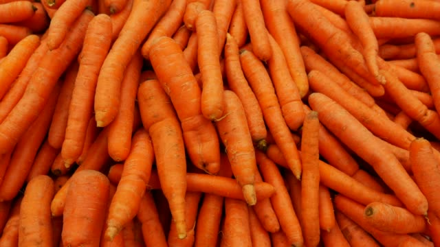 carrot at farmer's market - carrot stock videos & royalty-free footage