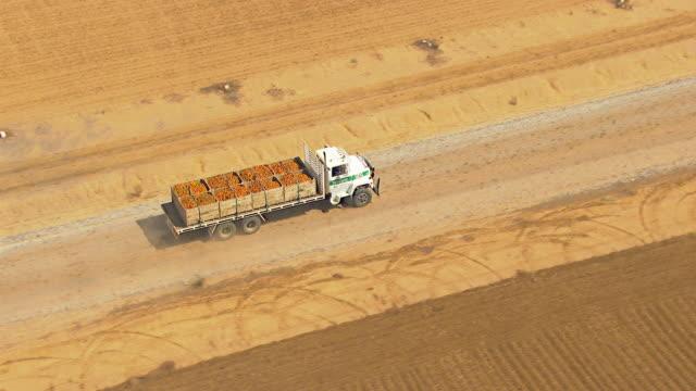 ms aerial zo ts carrot loaded truck moving on dirt road / adelaide, south australia, australia - transportation video stock e b–roll