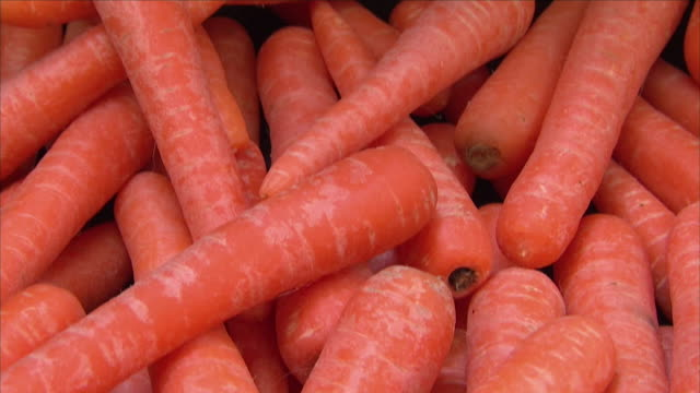 carrots - möhre stock-videos und b-roll-filmmaterial