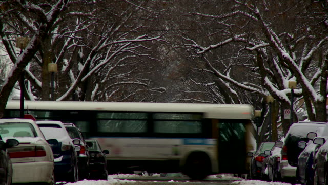 cars and bus in snowy montreal - montreal video stock e b–roll
