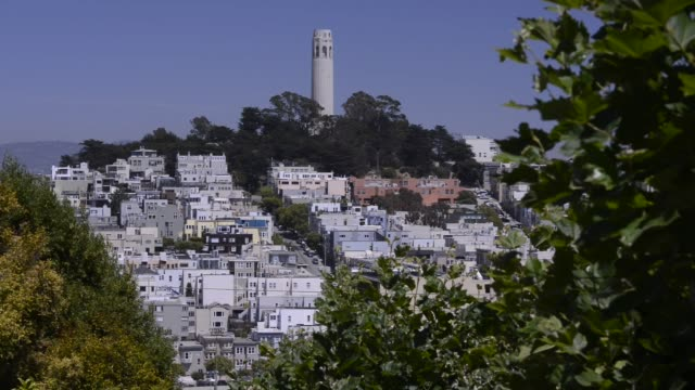 cars and pedestrians drive and walk down lombard street in san francisco, california, us, wide shots of coit tower on telegraph hill in san... - coit tower stock videos & royalty-free footage