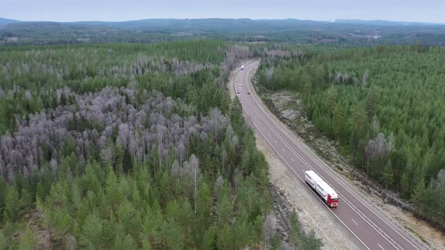 cars and trucks travelling through a forest landscape - on the move stock videos & royalty-free footage