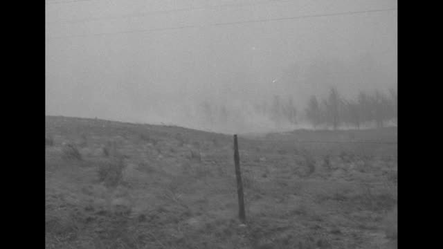vidéos et rushes de cars approach, driving on road with headlights on as they pass through area of heavy smoke resulting from brush fires / smoke on field / group of men... - phare de véhicule