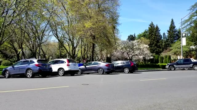 Cars are parked along Sonoma Square in Sonoma County Sonoma California on a sunny day April 10 2019