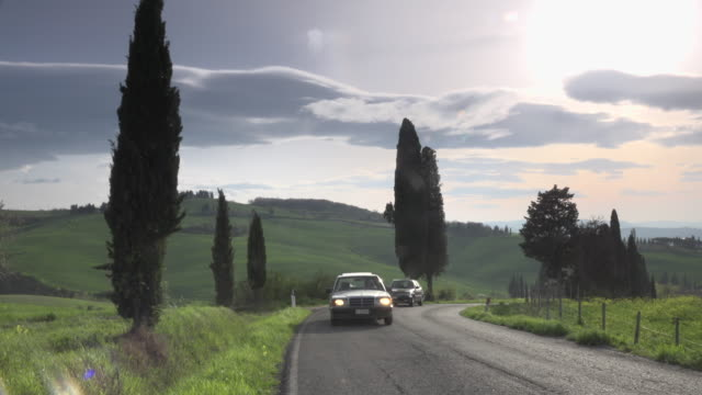 Cars driving on cypress tree lined road in tuscany hills