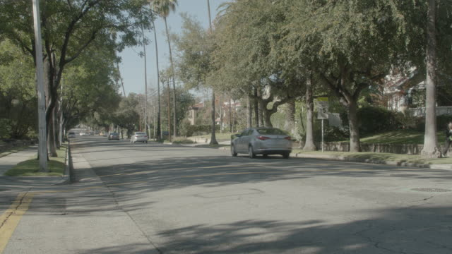 WS Cars driving on tree-lined, suburban street / Pasadena, California, United States