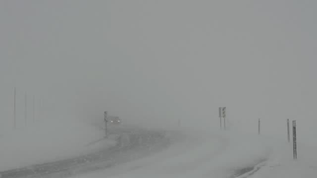 Cars driving toward camera during blizzard and white-out conditions.