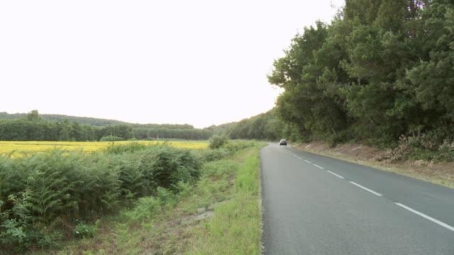 vidéos et rushes de ms cars moving on road along sunflower field in rural area / lit-et-mixe, aquitaine,  france - aquitaine