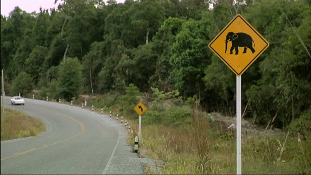 ws cars passing past elephant sign / cambodia - animal crossing sign stock videos & royalty-free footage